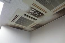熊本大学の室内除防かび/塗装仕上げ