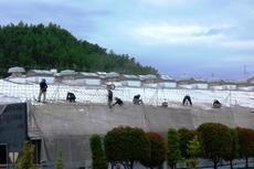 熊本工場スレート屋根遮断熱塗装 総勢20名で頑張りました。