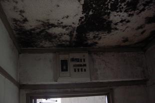 風呂場カビ除去工事 熊本団地内の施工後画像