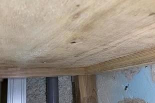 熊本施設 除カビ工事 20部屋(内壁・床下)の施工後画像