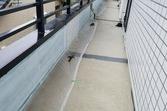 熊本市東区佐土原 店舗2階腰壁塗装工事(目地コーキング込み)