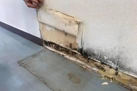 熊本店舗内除カビ作業(除カビクリーン工法)の施工前画像