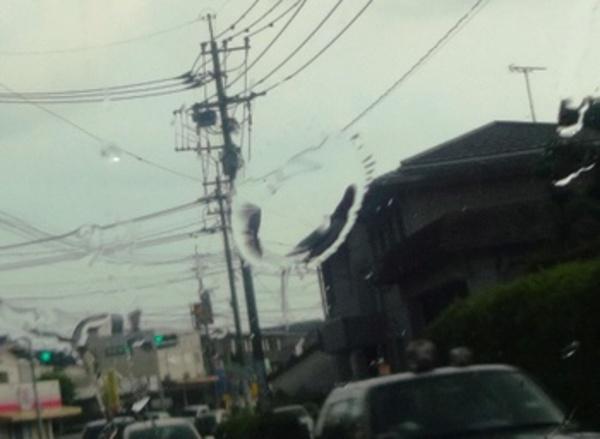でかい雨粒が降ってきたんだ熊本!