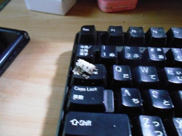 PC作業夢中になってたら・。・キーボードにあららのら