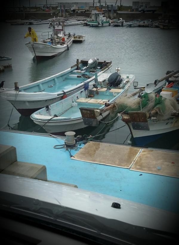 港で漁師さんを眺める俺~河内~