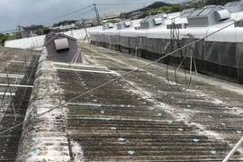 佐賀県 スレート屋根遮熱塗装工事・特殊塗装工事(工場屋根塗装3棟)の施工前画像