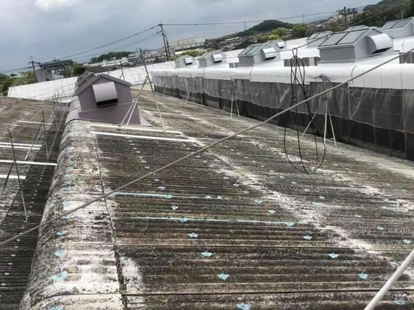 佐賀県 スレート屋根遮熱塗装工事・特殊塗装工事(工場屋根塗装3棟)